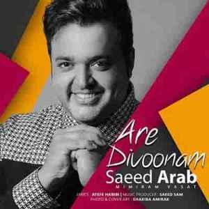 دانلود آهنگ جدیدسعید عرب –آرامش