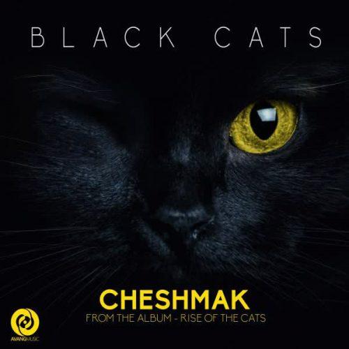 دانلود آهنگ Cheshmak ازBlack Cats در سایت فاز موزیک