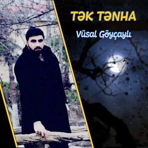 دانلود آهنگ Tek Tenha ازVusal Goycayli